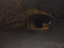 Jaskinia Wierzchowska_24