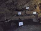 Jaskinia Wierzchowska_27