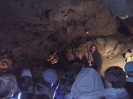 Jaskinia Wierzchowska_31