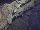 Jaskinia Wierzchowska_38