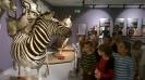 Klasa Ia w Muzeum Zoologicznym