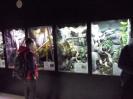 Muzeum Przyrodnicze_13