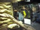 Muzeum Przyrodnicze_14
