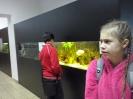 Muzeum Przyrodnicze_5