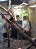 Muzeum Przyrodnicze_9